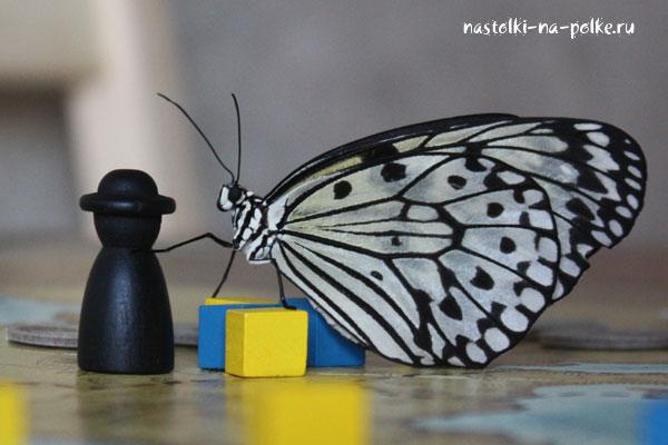Чумная фишка и бабочка